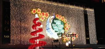 Orchard Road Christmas Lights Pictures 2013