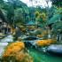 agoda bamboo village