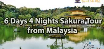 Japan Sakura Tour from Malaysia