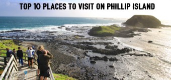 Best Phillip Island Tour From Melbourne