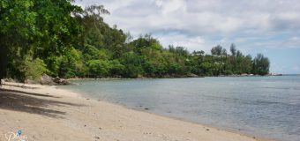 Rayee Beach Phuket: The Beach Next to Kamala Beach