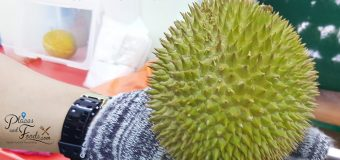 Golden Phoenix Durian Review at Sinnaco Durian Specialist