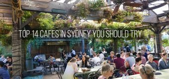 Top 14 Cafes In Sydney You Should Try