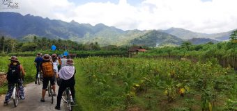 Bike Tour in Yogyakarta by Plataran Borobudur Resort & Spa