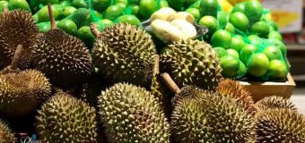 Australia Local Durian from Darwin and Queenland