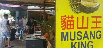 Kajang Sg Chua Famous Durian Stall Musang King