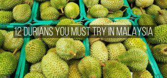12 Durians You Must Try in Malaysia