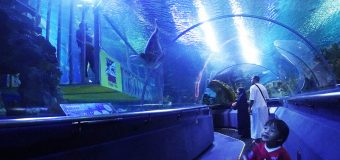 Aquaria KLCC Kuala Lumpur Discount Tickets for Tourists and Locals
