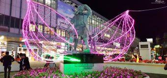 Okayama MOMOTAROH FANTASY Illumination Christmas Lights