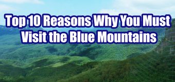 Top 10 Reasons Why You Must Visit the Blue Mountains in New South Wales
