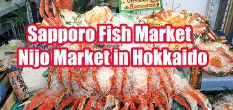 Nijo Seafood Market in Sapporo Hokkaido