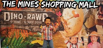 The Mines Shopping Mall Dino Rawr Hunt Event