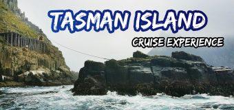 Tasman Island Cruise Experience