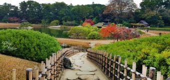 Korakuen Garden Okayama in Autumn Season