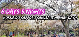 6 Days 5 Nights Hokkaido Sapporo Sakura Itinerary Day 3