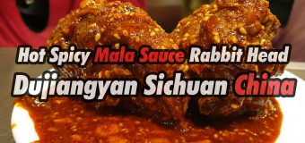 Spicy Mala Sauce Rabbit Head Food Dujiangyan China