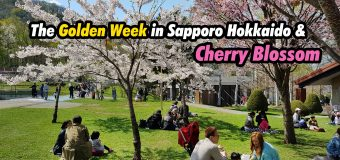 The Golden Week in Sapporo Hokkaido and Cherry Blossom