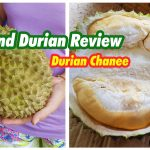 Thailand Durians Review Thai Durian Chanee