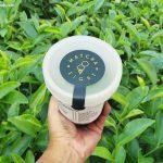 Matcha Eight Premium Green Tea Ice Cream from Kyoto Japan